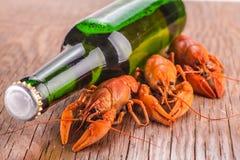 Bière et cancers photographie stock