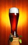 Bière et houblon Photographie stock
