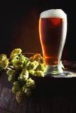 Bière et houblon sur le baril Images libres de droits