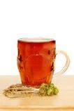 Bière et ingrédients Photographie stock