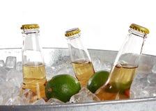 Bière et limette Photographie stock