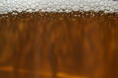 Bière foncée Photographie stock
