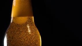 Bière fraîche dans la fin de bouteille  banque de vidéos