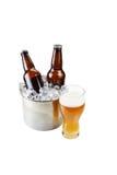 Bière fraîchement versée sur le fond blanc Photo libre de droits