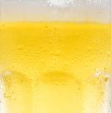 Bière froide Photographie stock