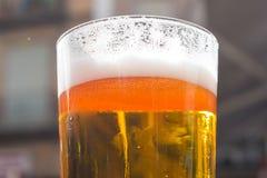 Bière froide et régénératrice Photos libres de droits