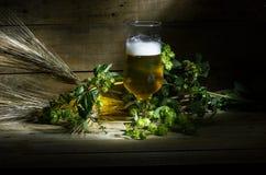 Bière, houblon et oreilles Photos stock