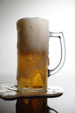 Bière mousseuse Images libres de droits