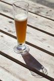 Bière non filtrée au soleil photo libre de droits
