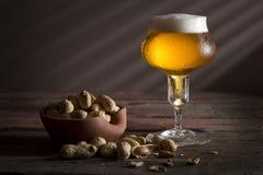 Bière pâle images libres de droits