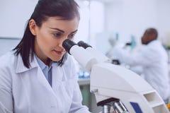 Biólogo fêmea alerta que trabalha no laboratório imagens de stock royalty free