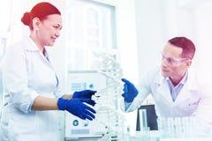 Biólogos elegantes profesionales que miran el modelo de la DNA imagen de archivo