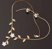 biżuteria złota Obraz Royalty Free