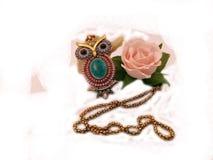 biżuterii sowa i róża Obraz Royalty Free