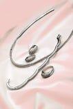 biżuteryjny cenny Zdjęcie Stock