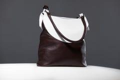 Bi цвета сумка Стоковые Фотографии RF