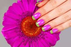 Bi koloru manicure Obrazy Royalty Free