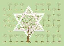 bi nowy shvat drzew tu rok Obraz Royalty Free