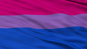 Bi Sexual Close Up Waving Flag. Bi Sexual Flag, Close Up Realistic 3D Animation, Seamless Loop - 10 Seconds Long stock video