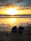 Biżuteryjny lying on the beach na piasku  Fotografia Stock