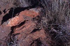 BIAŁY kwarcyt WYSTAWIAJĄCY W skałach MIĘDZY SUCHĄ trawą zdjęcie royalty free