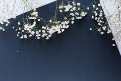 Białych kwiatów błękitnego papieru tło obraz stock