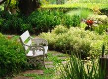 Biała ławka oblega z roślinami obraz royalty free