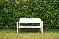 Biała ławka w zielonym ogródzie Fotografia Royalty Free