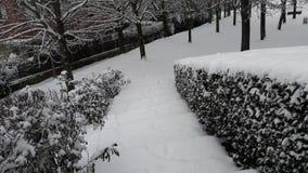 Biała ścieżka zdjęcia stock