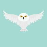 Biała Śnieżna sowa Latający ptak z dużymi skrzydłami Kolor żółty oczy Arktyczna Biegunowa zwierzęca kolekcja dziecko edukacja Pła Zdjęcie Stock
