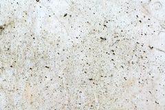Biała betonowa ściana 9 Zdjęcia Royalty Free