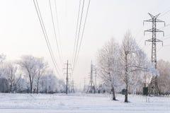 Biała droga przemian przez zamarzniętego zwartego śnieżnego lasu Zdjęcia Royalty Free