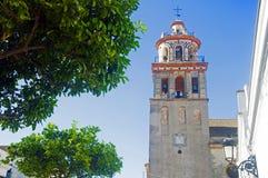 Biała dzwonnica i pomarańczowy drzewo, letni dzień obrazy stock