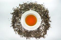 Biała filiżanka herbata z wysuszonym herbacianym liściem Fotografia Royalty Free