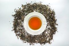 Biała filiżanka herbata z wysuszonym herbacianym liściem od odgórnego widoku Obraz Stock