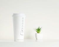 Biała filiżanka i zieleń puszkująca roślina zdjęcia stock