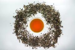 Biała filiżanka otaczająca wysuszonym herbacianym liściem herbata Obrazy Royalty Free
