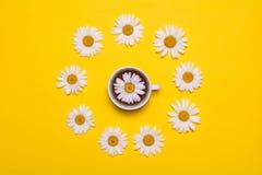 Biała filiżanka z chamomile herbatą na żółtym tle na widok fotografia stock