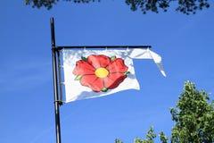 Biała flaga z czerwieni różą Zdjęcia Royalty Free