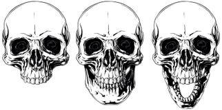 Biała graficzna ludzka czaszka z podbitymi oczami ustawiającymi ilustracji