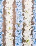 Biała i błękitna sztucznego kwiatu wiązka Fotografia Stock