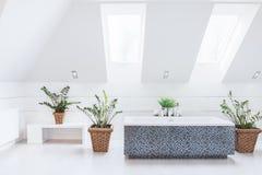 Biała jaskrawa łazienka obraz royalty free