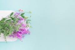 Biała koperta z menchiami kwitnie na błękitnym tle mail ty Obraz Stock