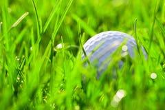 Biała piłka golfowa na trawie Zdjęcia Stock