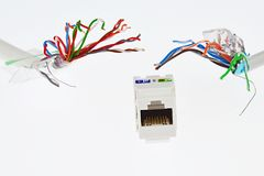 Biała plastikowa sieci RJ45 UTP żeńska nasadka która patrzeje jak czułki potwór, goni dwa UTP/STP kabla drutami Zdjęcia Royalty Free