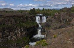 Biała rzeka Spada w wiośnie fotografia royalty free