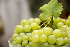 Biała wiązka winogrono Zdjęcia Stock