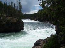 Biała woda Yellowstone park narodowy zdjęcie stock