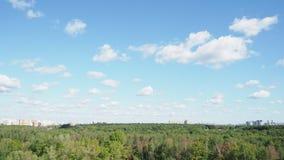 Białe chmury unoszą się w niebieskim niebie nad lasem i miastem zbiory wideo
