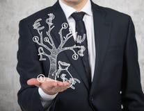 białe drzewo odizolowane pieniądze Obrazy Royalty Free
